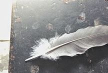 hope is the thing :: with feathers :: / before people put a bird on it, they put a feather on it.