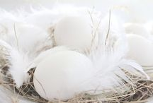 Easter | White / Easter and Spring Inspirations in Shades of White