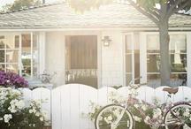 Home / by Adrienne Puckett