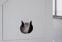 Hide that box!!! / Disguises and downright clever (!) hiding places for your kitty's litter box.