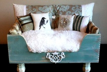 Snuggle In - Stylin' Lounges / Snazzy, comfy beds for the snoozin' kit 'n pooch.
