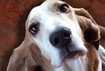 Basset Hound - Art and Gifts / Art, photography and gifts for Basset Hound and Bloodhound lovers.