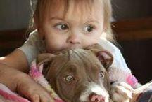 Photography - Children & Pets / Photography - Children & Pets
