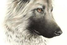 Painting - Dogs / Painting - Dogs