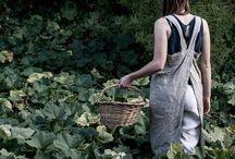 BOTANY | botanique / Plants | Indoor Plants | Gardening | Raised Bed
