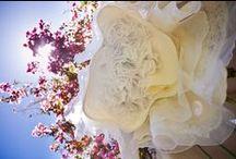 Wedding / by Gwen Wentland-Mikinski