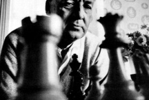 Vladimir Nabokov / A collection of interesting websites about the master