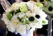 TPG Weddings