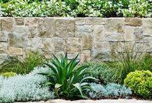 outdoor-gardens