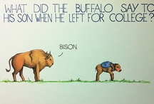 Funnies / by Becky Godsey