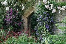 Timeless Gardens