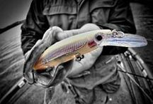 Lures / Fishing Lures