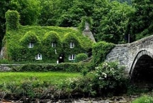 English country style  / ...outside and in...