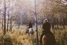 Country Livin / by Senah Hitchman