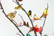 Birds of a Feather  / by Elana Arsondi