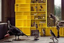 Cupboards / by Judith Schoffelen