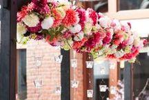 {Floral Design} Arches / floral wedding inspiration