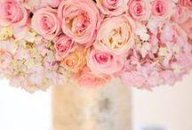 {Centrepieces} Pastel Pink
