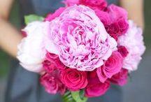 {Bouquets} Cerise Pink