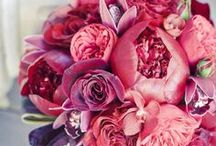 {Bouquets} JewelTones / floral wedding inspiration