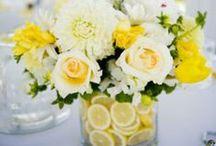 {Centrepieces} Yellow & Lemon
