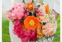 {Bouquets} Citrus Brights