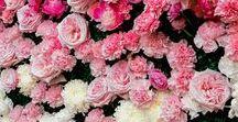{Floral Design} Flower Walls