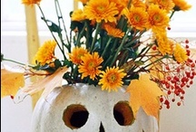 halloween/fall love / by Lisa Bienko