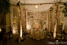 Birch Wedding Decor / Natural, rustic wedding decor by Eggsotic Events. This includes lighting, birch chuppahs and arbors, centerpieces, birch candles, and more.