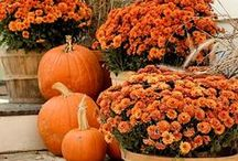 All Hallows' Eve // Autumn / Halloween! and Fall pins.