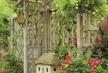 Gardening in Small Spaces / by Betty Hanssen