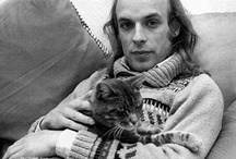 Celebrities and cats