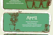 Gardening / Gardening, plants and herbs