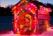 christmas / Christmas everything!
