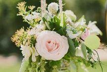 Wedding Ideas / by Lauree Kolar