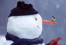 Snow People and Pets