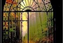 Let Me In, Please