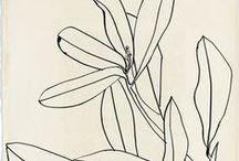 ART: Illustrations
