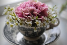 Beautiful Garden Clippings / My Most Favorite thing about my Flower Gardens,Is to Clip my Flowers and put in Lovely little Vases around my Home!!  / by Kimberly Keith Stanley