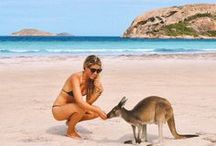 Australia Travel Guide / Find inspiration for Australia travel here, whether it's where to go, how to road trip Australia, ways to save money, and where the prettiest destinations are. There's no doubt about it: Australia is one of the most diverse countries in the world.