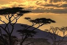 Sunsets in Africa / A photography collection of the most beautiful sunsets in Africa. One of my favourite things about travelling is being able to watch the sunset from different places around, but Africa takes sunsets to another level.