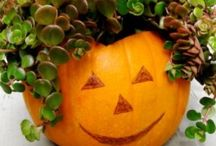 Autumn Halloween & Thanksgiving / Fall decorations and recipes / by Deborah Phelps