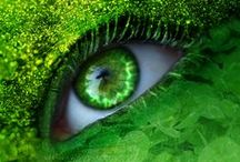 Love the Art of Green / Green is deemed a not so favorite in the color spectrum, but there are far too many reasons to Go Green.