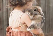 Rabbits and Bunnies! / I love bunnies :D