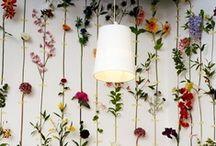 The Wall ★ Paredes  / Wall decor ideas Ideas de Decoración de paredes