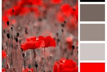 Color Palettes / Color can make or break your artwork.  These are some of my favorite color combinations in action.