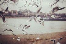 moments by sina.rebenstorf