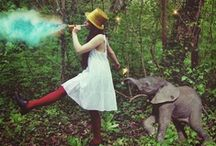 Elephants ★ Elefantes / Elephants/ Elefantes