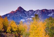 Rocky Mountain Dreaming / by Manda Troutman