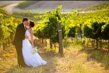 Temecula Weddings / The best-of-the-best in Temecula Valley. Gorgeous venues, top notch professionals and everything that makes Temecula Wine Country an amazing Destination Wedding Location.